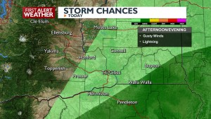 Afternoon and evening storms
