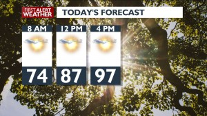 Sunshine and a little cooler today